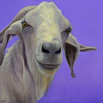 """Harley""