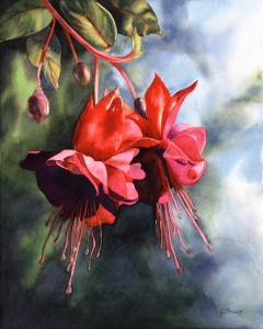 """Fuchsia Fireworks""  Watercolor by Joan Brown"