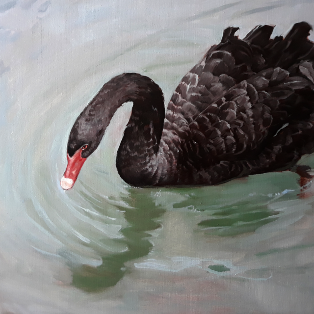 "Oil Painting ""Black Swan"" by Jenay Elder Art & Soul Gallery"