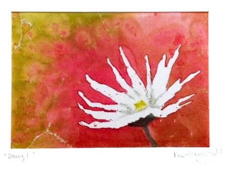 Daisy by Pam Haunschild