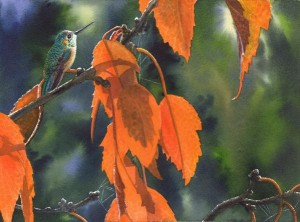 Catherine McElroy's Watercolor: Hummer
