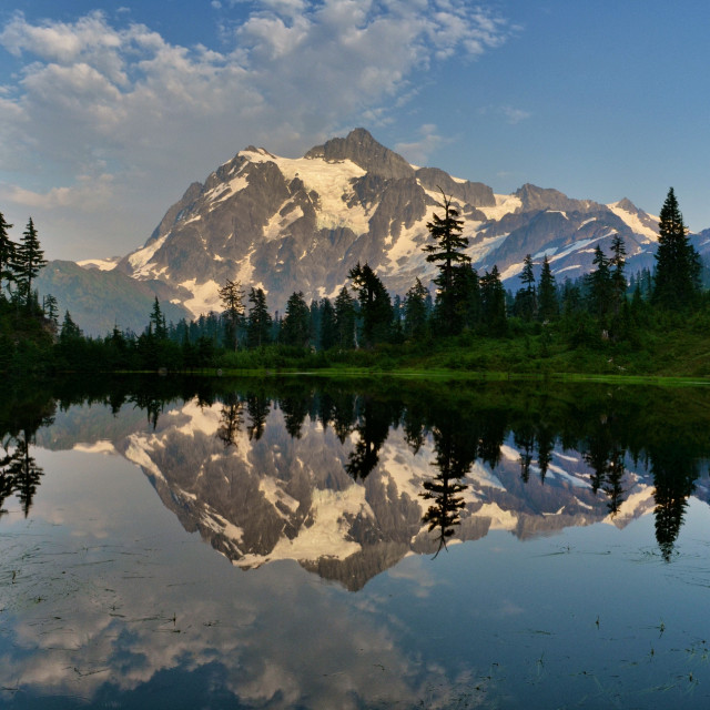 Mt Shuksan Reflected