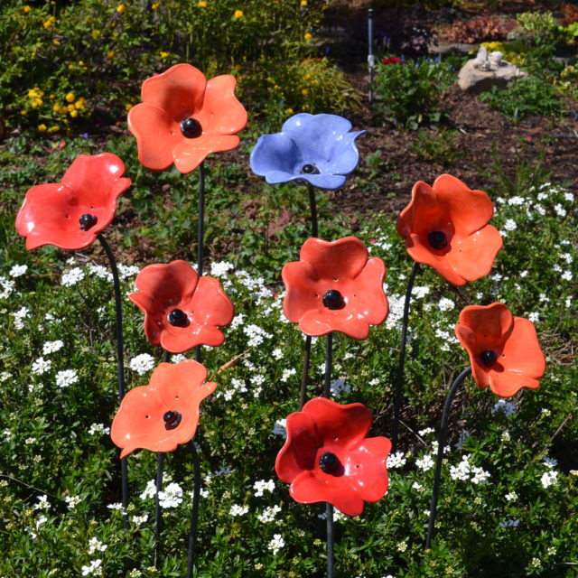 Cheryl Kempner's Poppies