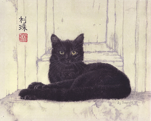 Cat on Step Sumi Ink by Liz Sheperd