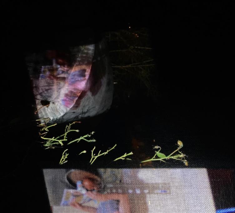 Screen Shot 2020-02-19 at 2.48.59 PM