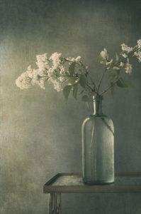 Vase & Lilacs